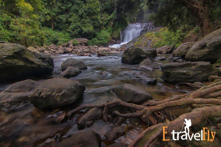 meesapulimala,meesapulimala trekking,meesappulimala camp,meesapulimala trek booking,