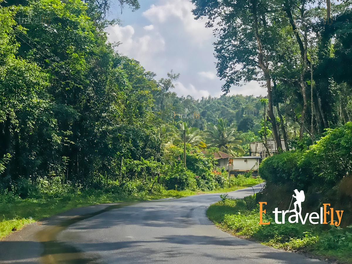chettalli Coorg-Madikeri Packages / Sightseeing - Etravelfly